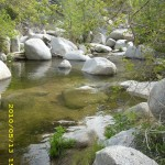 may13_creek2