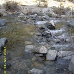 may18_creek