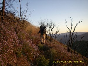 may20_sunrisetrail