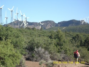 18june5windmills