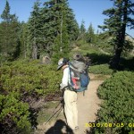 aug5_8hikertrailforest